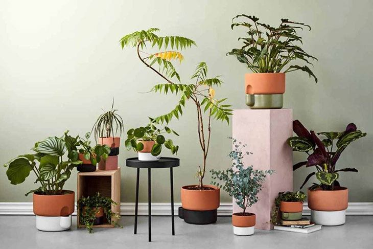 what is a self watering pot