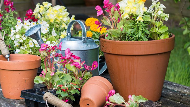 what is self watering potting mix